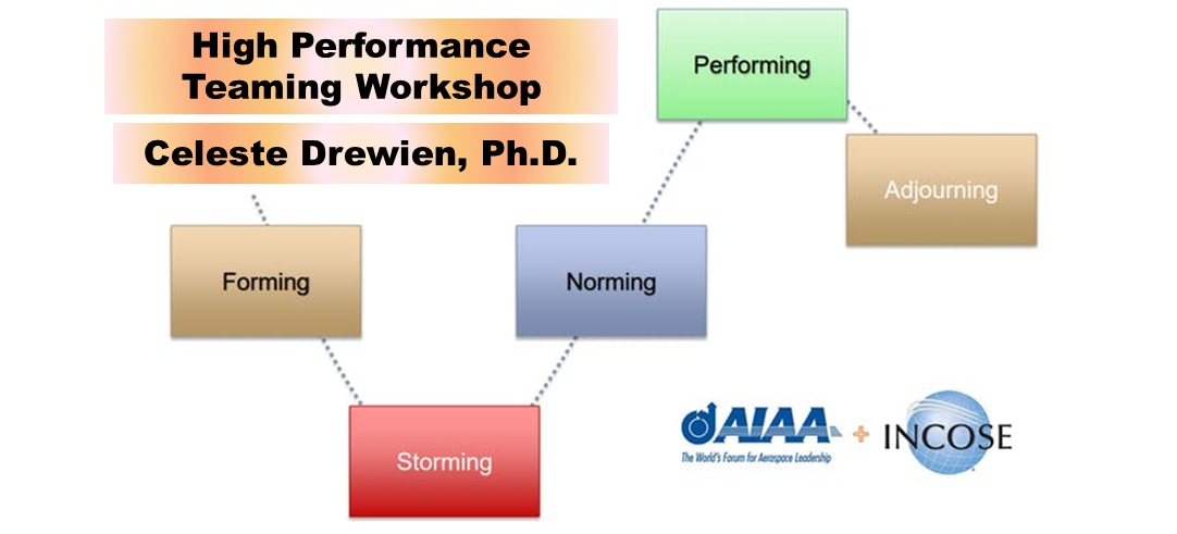 High Performance Teaming Workshop